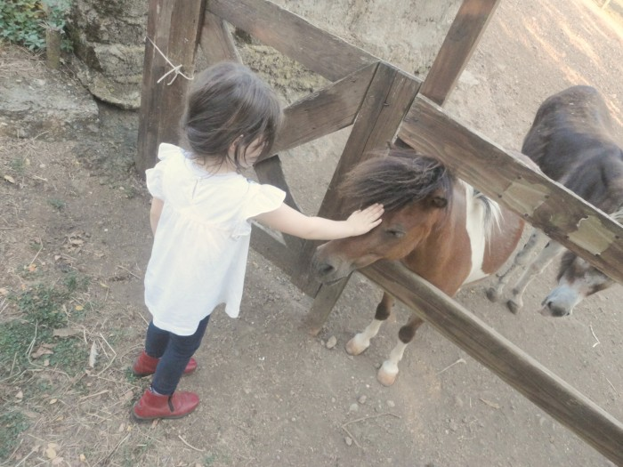 bee and her little pony
